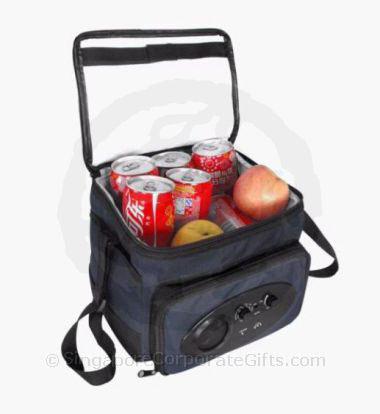 Cooler Bag with Radio 3