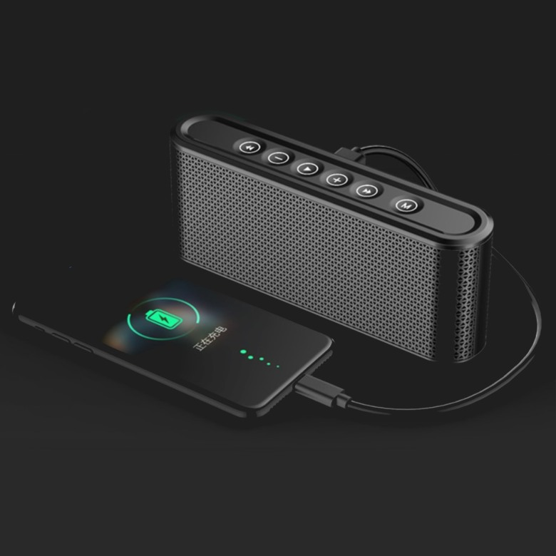 Bluetooth Speaker with Powerbank [8000mAh]